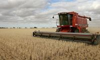 Russia to reschedule wheat contracts with Egypt, despite grain exports ban